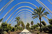L´ Umbracle, by S Calatrava City of Arts and Sciences Comunidad Valenciana Valencia Spain