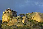 Los Barruecos Natural park Malpartida de Caceres Caceres province Extremadura Spain