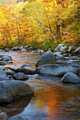 America, Autumn, Cold, Color, Colour, Cool, Creek, Fall, Landscape, New, New Hampshire, October, Orange, Reflection, River, Rock, scenic, United states, Vermont, Water, Yellow, S19-830124, agefotostock