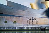 Guggenheim and spider Mama,  Bilbao,  Vizcaya,  Spain
