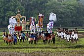 Custom, Farbe, Indien, Kerala, Keralam, Ländlich, Religion, Segel, Segeln, V11-825926, agefotostock