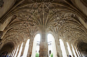 Star-shaped vault in the cloister of the old monastery and hospital of San Marcos,  Leon. Castilla-Leon,  Spain