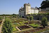 France,  Villandry 37  Castle and decorative vegetable garden