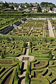 France,  Villandry 37  Ornamental and vegetable gardens in castle of Villandry gardens