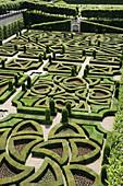France,  Villandry 37  Ornamental garden in Villandry castle gardens