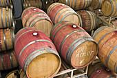 Red wine barrels in aging room