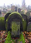 Jewish Cemetery at Kazimierz district,  Krakow,  Poland