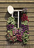 Poland,  Krakow,  decorative windows