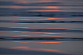 Sunlight reflecting on the water surface in the evening light, Lake Chiemsee, Chiemgau, Bavaria, Germany