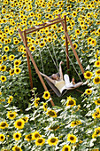 Young woman sitting on a swing in a field full of sunflowers, Bavaria, Germany