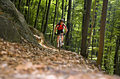 Mountain biker passing forest trail, Palatine Forest, Rhineland-Palentine, Germany