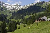 Alpine dairy Laufbichl Alpe in Hintersteiner Tal, Bad Hindelang, Allgau, Swabia, Bavaria, Germany