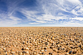 Little stones in libyan desert, Libya, Sahara, North Africa