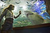 Girl looking at shark in Palacio del Mar aquarium, San Sebastian, Guipuzcoa, Basque Country, Spain