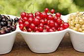 Black, red and white currants.