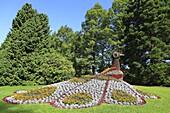 Blumenfigur auf der Insel Mainau, Landkreis Konstanz, Baden Württemberg, Deutschland / Flower bed in the shape of a peacock, Mainau Island, Lake Constance, Konstanz district, Baden-Wuerttemberg, Germany, Europe, Europe
