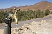 Water tap in the desert near Tamnougalt in the Draa Valley, Morocco