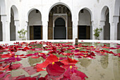 Petal of Rose blossoms in a fountain at the patio of the Bahia Palace in Marrakech, Morocco
