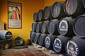 Wine aging in the cellars of Navarro winery, Montilla-Moriles wine district, Montilla. Cordoba province, Andalusia, Spain