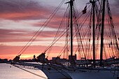 USA,Massachusetts, Boston, Sail Boston Tall Ships Festival, tall ship masts, sunrise