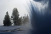 Geyser in winter, Yellowstone National Park, USA