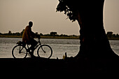 Man on bicycle and chicken on the bank of river Niger in the evening, Sagou, Mali, Africa