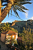 House and palm tree at Masca, Tenno mountains, Tenerife, Canary Isles, Spain, Europe