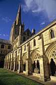UK, England, Norfolk, Norwich Cathedral, primarily built 1096-1145: Cloiser lawn or ´garth´, cloister, south transept, crossing tower and spire, both the seat of a bishop and a Benedictine priory