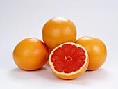 Grapefruit, Citrus fruits