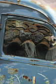 Old truck with the reflection of roofing tiles, Provence, France, Europe
