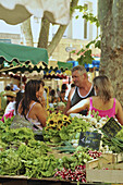 People on the market at the town hall, Aix-en-Provence, Provence, France, Europe