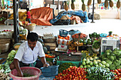 Fruits and vegetables on the market of village 3, Havelock Island, Andamans, India