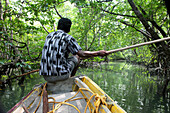 Local man on a boat driving through mangrove forest, Baratang, Middle Andaman, Andamans, India