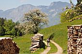 Mountainous landscape above lake Hintersteiner near Scheffau at Wilder Kaiser, Tyrol, Austria