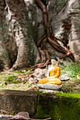 Little Buddha statue as offering at the Seema Malaka temple on Beira Lake, Colombo, Sri Lanka, Asia