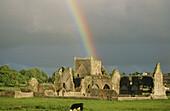 Hore Abbey am Abend mit Regenbogen, County Tipperary, Irland