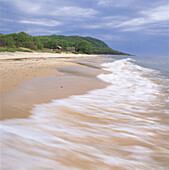 Sandy beach, Stenshuvud National Park, osterlen, Skane, Sweden