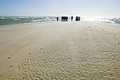 People on the beach, Skagen, Jutland, Denmark