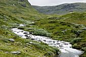 Stream in Aurland, Norway