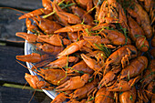 Boiled crayfishes on a dish