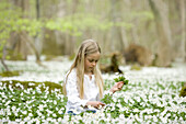 Girl is picking wood anemones
