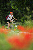 Female cyclist, poppies in foreground, Altmuehltal cycle trail, Altmuehltal natural park, Altmuehltal, Bavaria, Germany