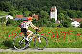 Woman cycling along meadow of poppies, village in background, Altmuehltal cycle trail, Altmuehltal, Bavaria, Germany