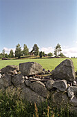 Countryside with red wooden cottage and dry stone wall, Smaland, Sweden, Europe