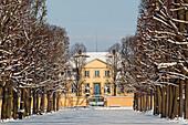 Winter scene in Herrenhausen Garden, avenue of trees, Hanover, Lower Saxony, Germany