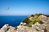 Lighthouse, Capo di Milazzo, Sicily, Italy