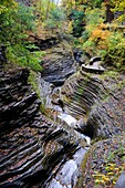 Watkins Glen State Park Finger Lakes Region New York Lake Seneca