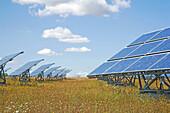 Alternative Energie, Alternative Energiequellen, Aufgestellt, Aussen, Draussen, Erneuerbare Energien, Farbe, Land, Liniert, Ökologie, Solarkraft, Sonnenkollektor, Sonnenkollektoren, Sonnig, Tageszeit, Umwelt, Viele, L88-902696, agefotostock