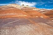 Colorful Bentonite Hills of Capitol Reef National Park Utah