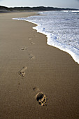 Foot prints on pristine beach of Maputalan coast near Rocktail Bay Lodge, Kosi Bay. KwaZulu Natal, South Africa